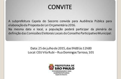 Audincia Pblica00423072015151025